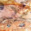 Inkographie 22 - Art numérique - digital art