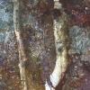 inkographie 30 - Art numérique - digital art