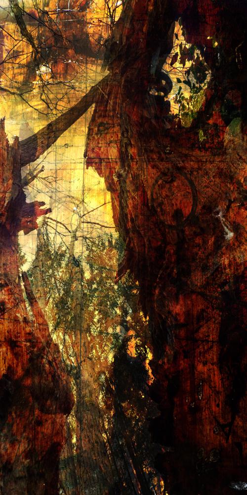 Inkographie 31 - Art numérique - digital art